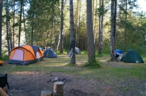 What to Consider When Choosing a Campsite